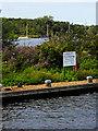 TG3116 : Free Moorings on Wroxam Broad Island by David Dixon