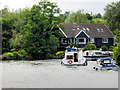 TG3117 : River Bure, Downstream of Wroxham by David Dixon