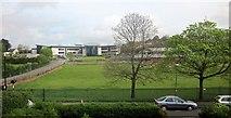 SX9065 : Spring, Torquay Academy by Derek Harper