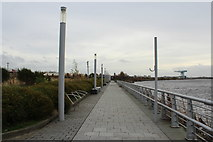 NS4870 : Footpath by the River Clyde by Billy McCrorie