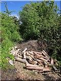 SX9066 : Discarded tree guards, Nightingale Park by Derek Harper