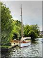 "TG3017 : Norfolk Wherry ""Olive"" at Wroxham by David Dixon"