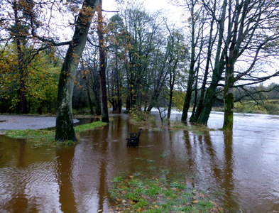 H4772 : Flooded path, Cranny by Kenneth  Allen