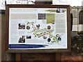 TM0533 : Dedham Information Board by Adrian Cable