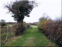 NZ2207 : Field entrance off Kneeton Lane by JThomas