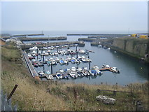 NZ4349 : Marina, North Dock, Seaham Harbour by Colin Pyle