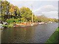 TQ1079 : Dutch barge, Bull's Bridge moorings by David Hawgood