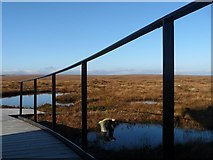 NC8842 : Dubh Lochan, RSPB Forsinard, Sutherland by Claire Pegrum