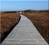 NC8842 : Boardwalk, RSPB Forsinard, Sutherland by Claire Pegrum