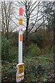 SX9066 : Gas pipeline marker, Torquay by Derek Harper