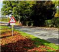 SJ5541 : Warning sign - low bridge ahead, Waymills, Whitchurch, Shropshire by Jaggery