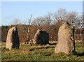 NJ5548 : Rothiemay Recumbent Stone Circle (5) by Anne Burgess