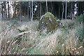 NJ6142 : Frendraught Recumbent Stone Circle (1) by Anne Burgess