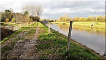 SD8100 : Path by the River Irwell by Bradley Michael