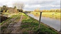 SD8100 : Path by the River Irwell by Bradley Horrocks