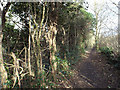 SP3477 : Long straight footpath to the Stoke area from Whitley, Coventry by Robin Stott