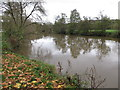 ST6867 : River Avon at The Shallows, Saltford by David Hawgood