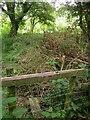 SU0022 : Stile near Woodminton by Derek Harper