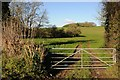SP0605 : Gate and field entrance by Philip Halling