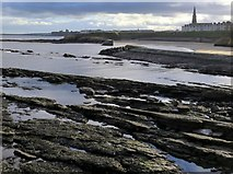 NZ3671 : Cullercoats Bay towards Tynemouth by Andrew Curtis