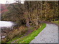 NY3305 : Path Along the Western Edge of Grasmere by David Dixon