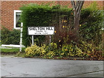 TM2374 : Shelton Hill sign by Adrian Cable