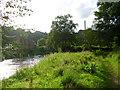 SD6227 : Footbridge on the River Darwen in Hoghton Bottoms by Adam C Snape