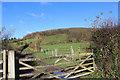 SU7891 : Towards Hanger Wood by Des Blenkinsopp