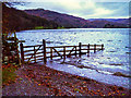NY3405 : Gate on Shore Path, Southern End of Grasmere by David Dixon