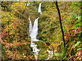 NY3804 : Stock Ghyll Force (Waterfall) by David Dixon