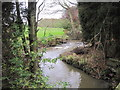 NZ2092 : Weir on the River Lyne by Les Hull