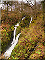 NY3804 : Stock Ghyll Force, Ambleside by David Dixon