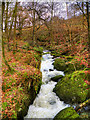 NY3804 : Stock Ghyll Force by David Dixon