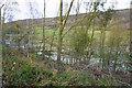 SK2466 : Shadyside Plantation by Bill Boaden