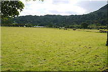 NY3307 : Flat Pasture meadows at Grasmere by Nigel Mykura