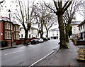 ST3088 : Tree-lined Clytha Park Road, Newport by Jaggery