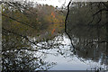 SU8062 : Former gravel pit, Blackwater River Valley by Alan Hunt