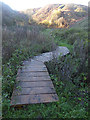 NZ4441 : Footbridge over Blackhills Gill by Oliver Dixon