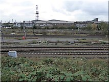 TQ2182 : Railway lines passing Willesden Junction station by David Smith