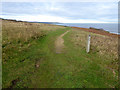 NZ4639 : England Coast Path at Blackhall Rocks by Oliver Dixon