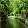 SO8379 : Canal cutting north-east of Wolverley, Worcestershire by Roger  Kidd