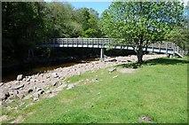 NY7962 : Footbridge crossing the River Allen by Philip Halling