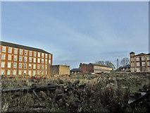 NS7792 : Derelict ground at Hayford Mill by Richard Dorrell