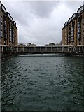 TQ3680 : View from the Thames Pathway by Dave Thompson
