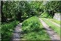 NU0601 : A riverside walk by Philip Halling