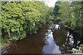 SK2477 : River Derwent by N Chadwick