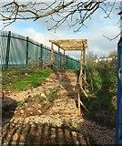 SX9065 : Community garden, Cricketfield Road, Torquay by Derek Harper