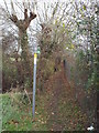TQ6745 : Public footpath near Paddock Wood by Malc McDonald