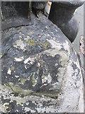 SO2956 : Ordnance Survey Rivet by Adrian Dust