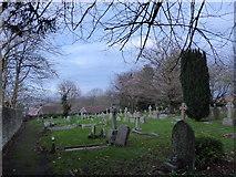 TQ5802 : St Mary, Willingdon: churchyard (e) by Basher Eyre
